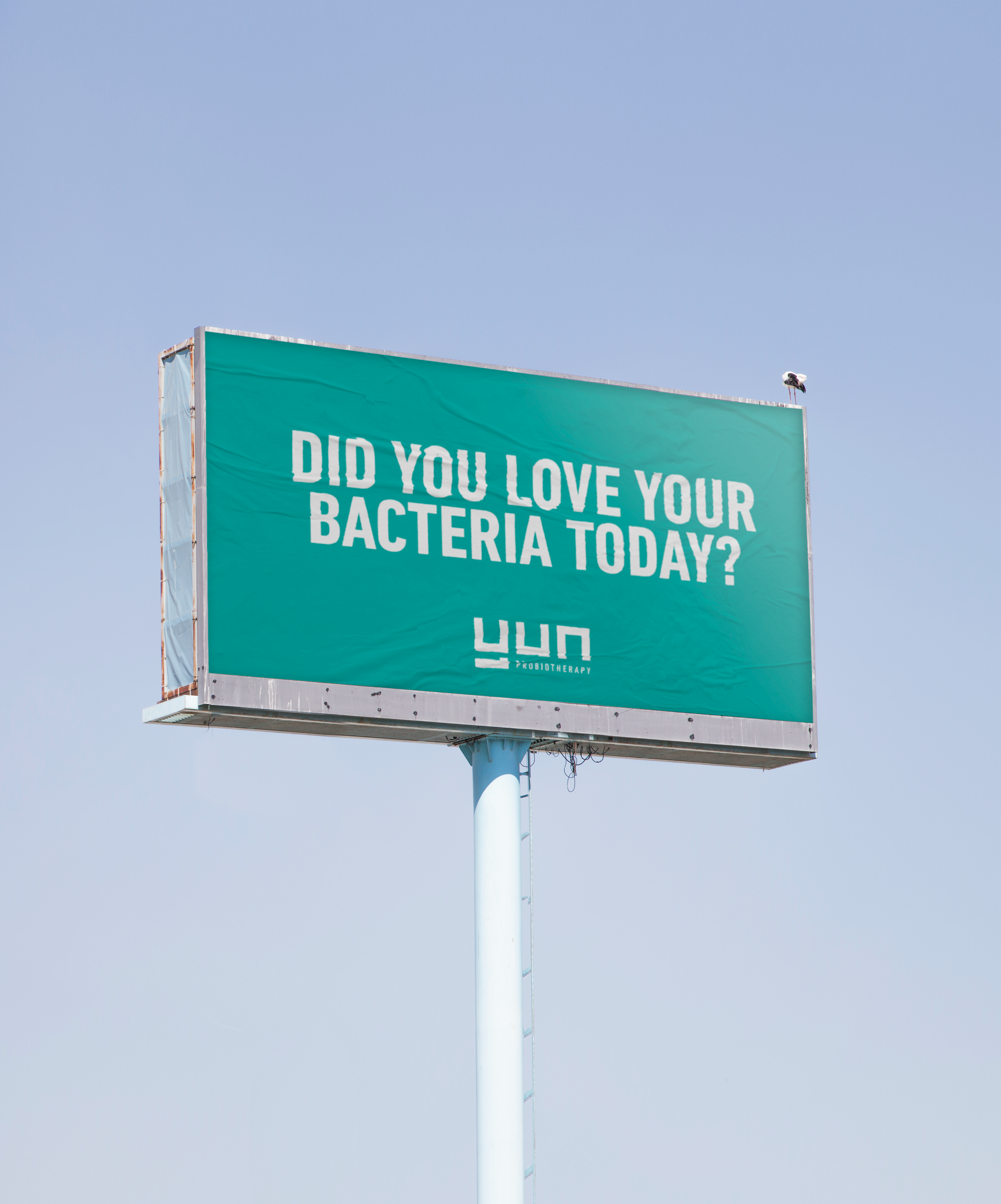 Love your bacteria