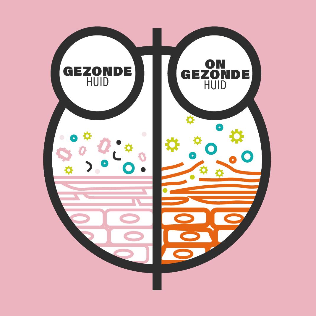GEZONDE HUID@4x