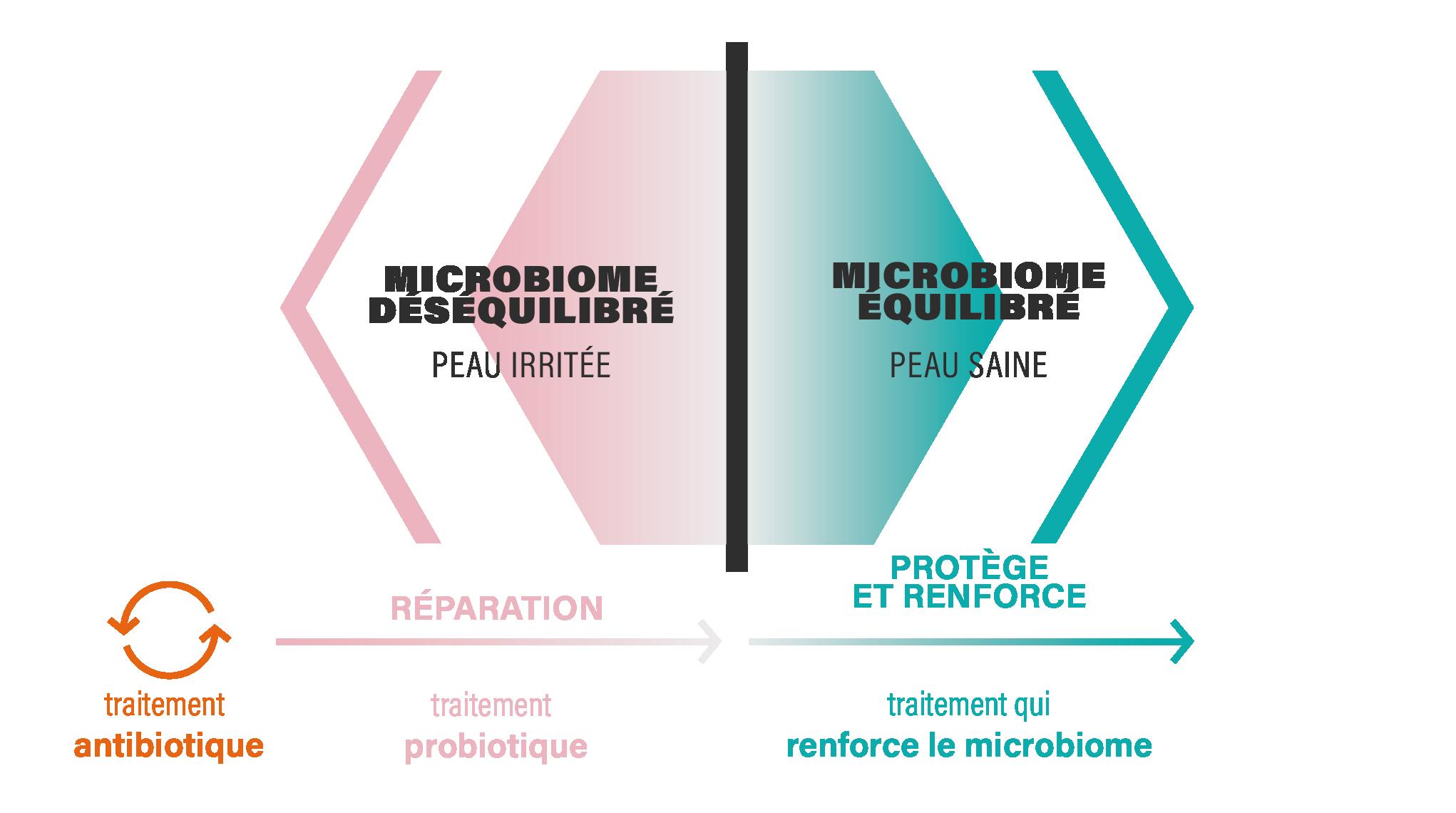 BALANCED MICROBIOME_Fr@4x